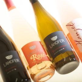 Chcete ochutnať naše víno zdarma?